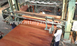monywa-factory-11